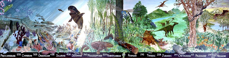 Life through time exhibit mural