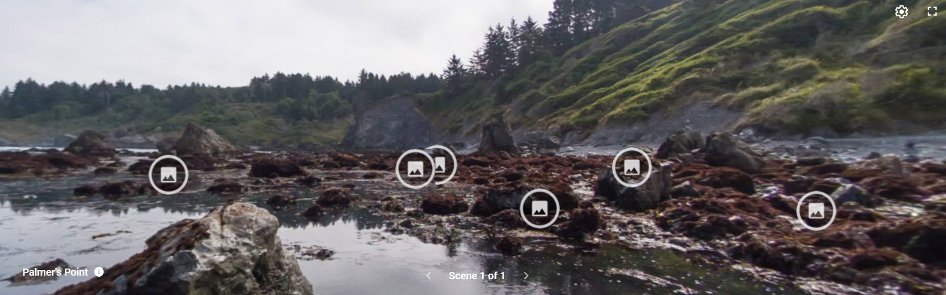 Image of Plamer's Point Virtual Tidepool
